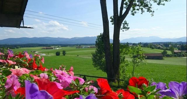 Moar Alm Blick von Terrasse